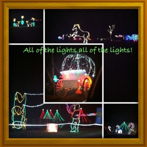 Christmas Lights at Shelby Farm