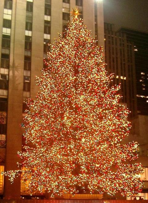 rockefeller-center-christmas-tree-cropped_l